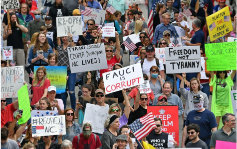 America's Lockdown Protests are Politically Charged, Harmful and Counterproductive